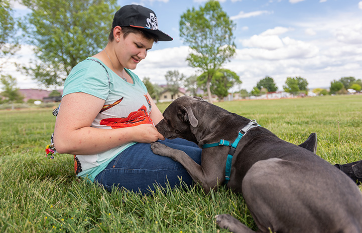 Chunk the dog sniffing at the lap of a woman sitting in the grass