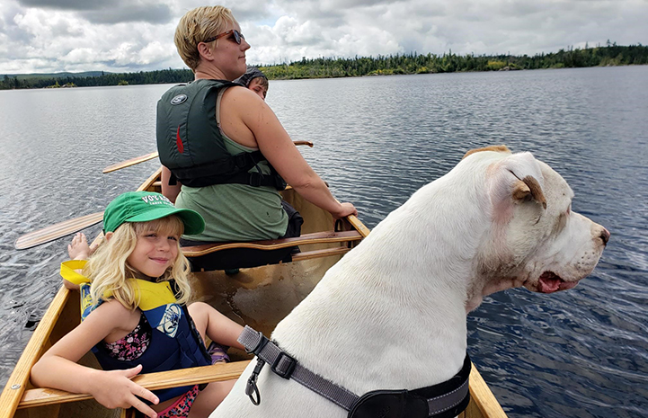 Doc the white dog in a boat with his new family