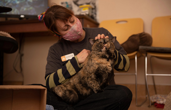 Woman petting Everest the tortoiseshell cat in her lap