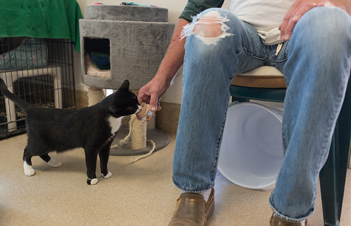 Luigi taking some baby food from caregiver Mike's fingers