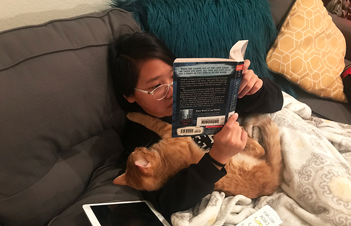 Dan the orange cat snuggling on the couch with a young girl who's reading