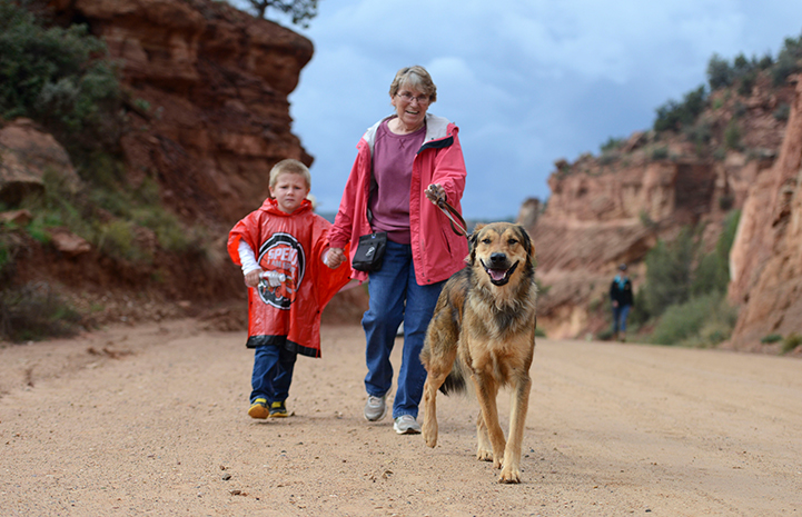 Betty Grieb and her grandson walking in Strut Your Mutt with another dog