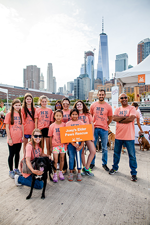 The Joey's Elder Paws team at the 2017 New York City Strut Your Mutt event