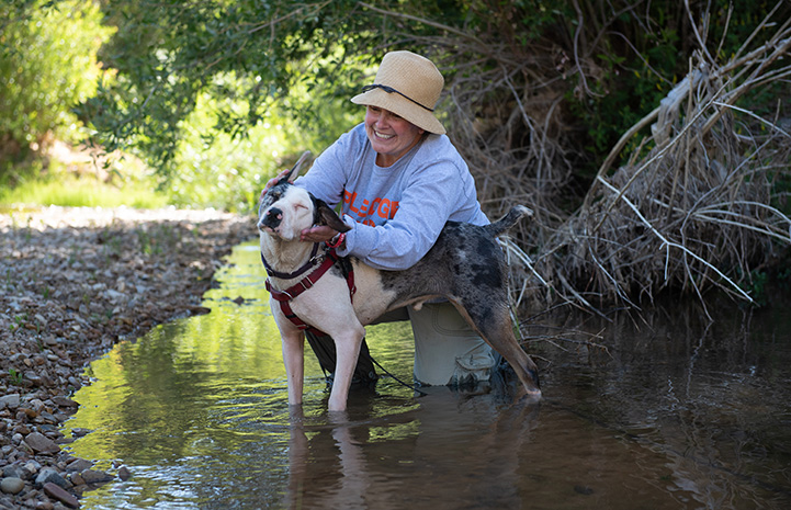 Woman petting Frankie the dog while they're in a creek