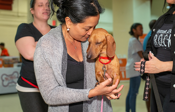 Woman holding a Dachshund with both of their heads leaned up against each other