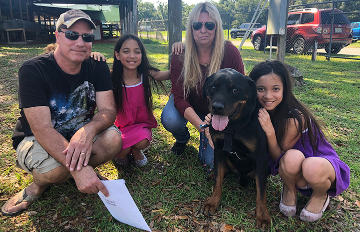 Happy family adopting a rottweiler mix dog