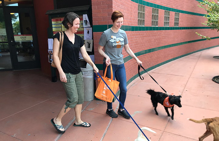 Volunteer Jessica Roper walking a small black dog wearing a bandanna next to another woman walking a dog