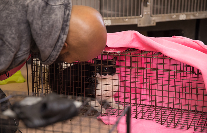"Sterling ""Trap King"" Davis looking into a live trap holding a black and white cat"