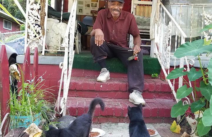 "Larry Caulton's community cats do their ""love dance"""