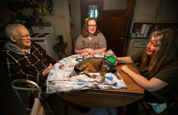 Hercules the therapy cat lying on a blanket on a table with three people sitting around him