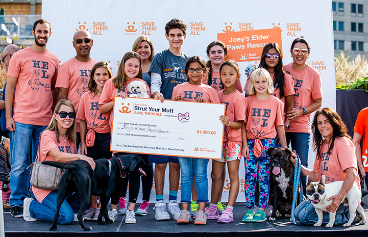 Joey's Elder Paws Rescue receives top fundraising award