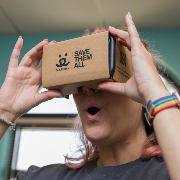 Woman looking through cardboard VR goggles