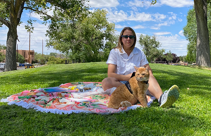Orange tabby cat in a harness outside on a blanket with a woman