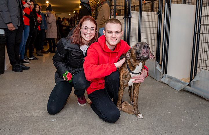 Couple hugging brindle and white dog at New York adoption event