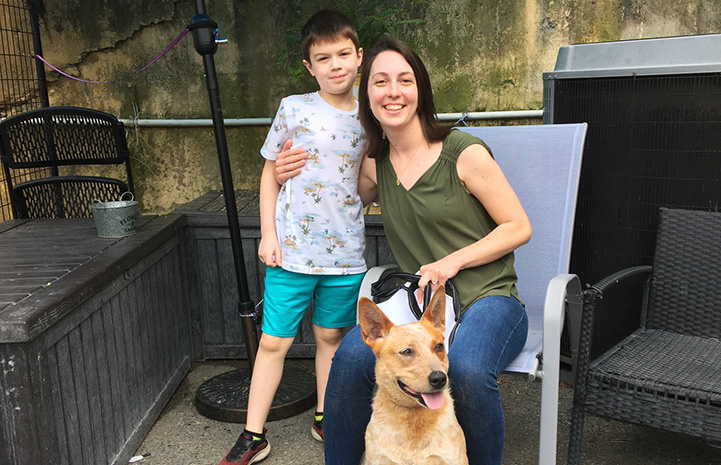 Couple adopting a heeler dog from Angels of Assisi