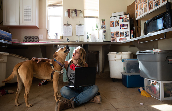 Scooby the dog next to a woman who has her arm around him and a computer in her lap doing a virtual meet-and-greet