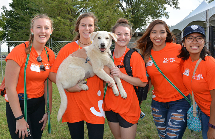 Group of five volunteers wearing orange T-shirts holding a big blond Lab puppy named Mona