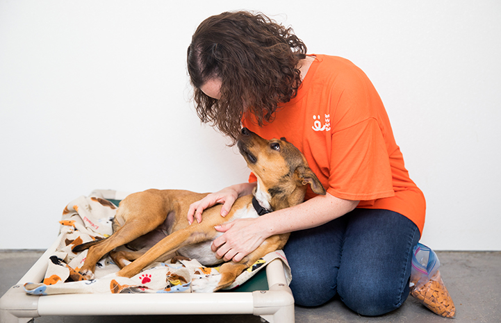 Volunteer Lisa McManus sitting on the ground next to Topanga, a dog lying down in a bed