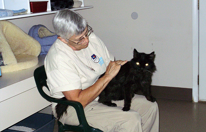 Bobbie Oldfield sitting in a chair and petting a black cat at Best Friends Animal Sanctuary