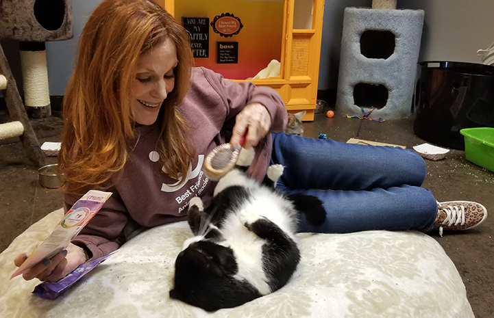 Volunteer Connie Murphy lying on the floor playing with a black and white cat