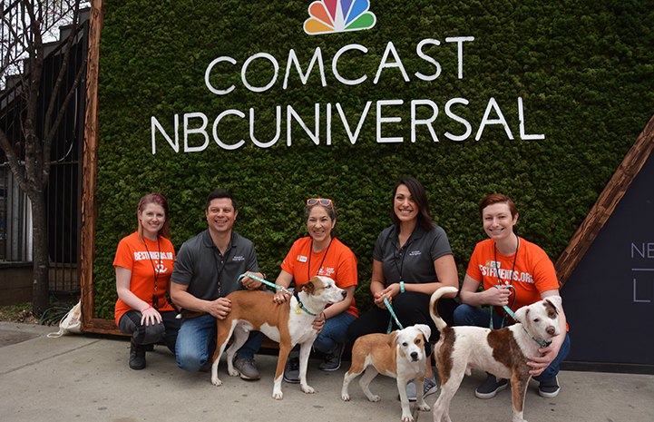 Volunteer Deya Galvan with other people and three dogs in front of a Comcast NBCUniversal sign