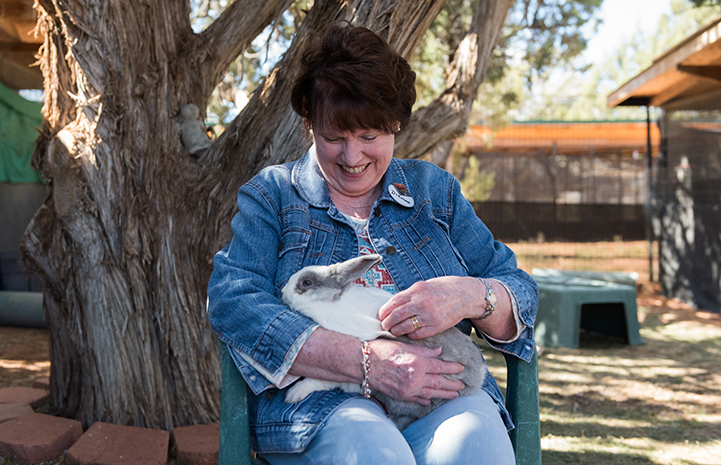 Dianne volunteering at Bunny House with a rabbit on her lap