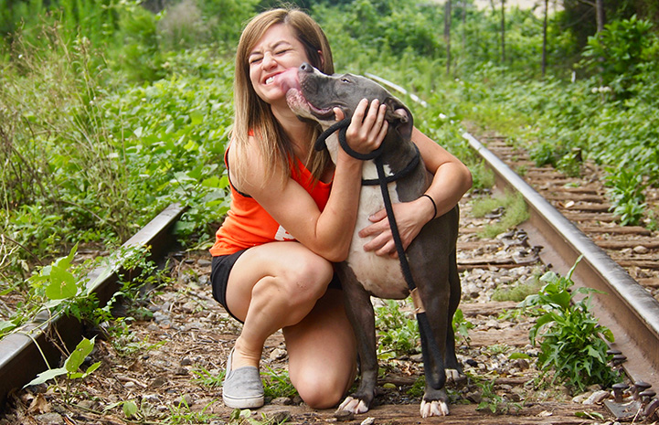 Jamie Serratell the volunteer getting kissed on the face by a gray and white pit bull type dog