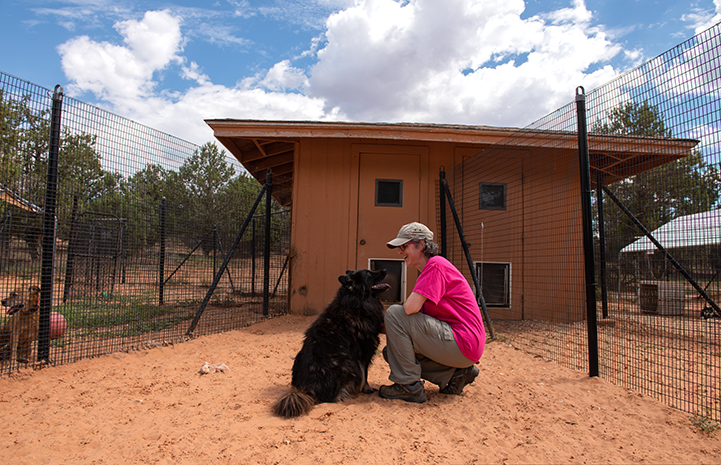 Volunteer Janice MacMillan crouching down to visit with Donner the dog in his kennel