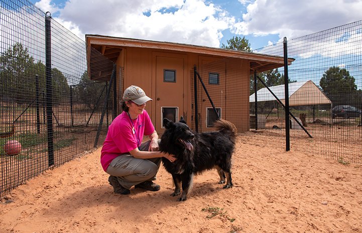 Volunteer Janice MacMillan in a kennel petting Donner the dog