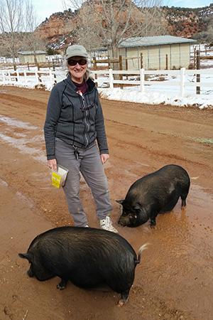 Volunteer Judy Steiger at Piggy Paradise