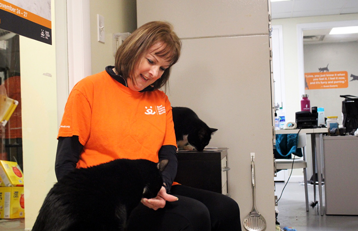 Volunteer Kathy Moran does adoption counseling for the cats as well as fostering