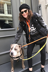 Volunteer Lauren Fishman walking a gray and white pit-bull-type dog