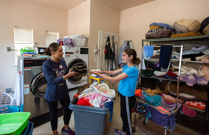 Lily and Jenny Grouf volunteering at Quincy House in Cat World doing laundry