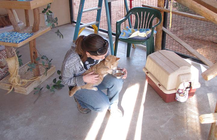 Volunteer Lizel Allen crouching on the floor with an orange cat in her lap