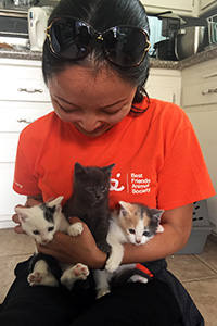 Volunteer Ranko Fukuda wearing an orange Best Friends volunteer T-shirt holding three kittens on her lap