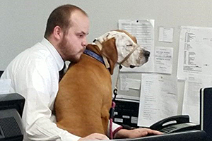 Volunteer Ron Burd working on the computer with a dog in his lap