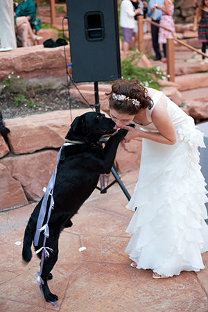 Volunteer Sarah Taylor with here Labrador Moose at her wedding