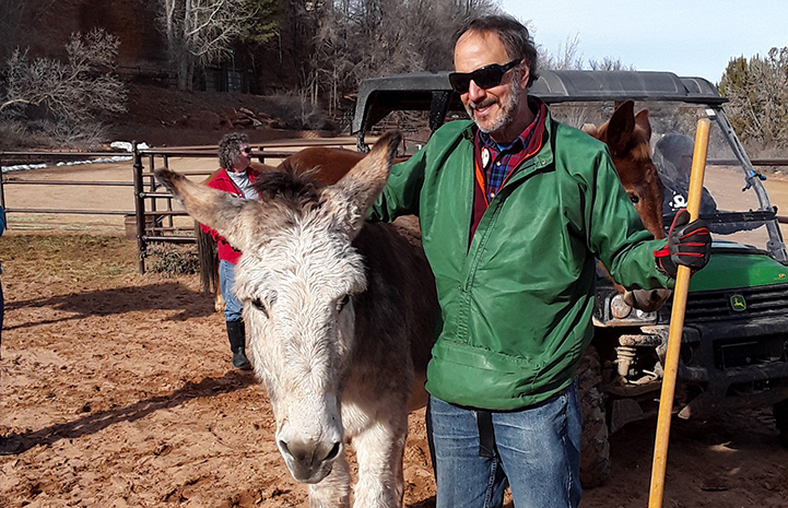Steve giving Speedy the donkey a hug while volunteering