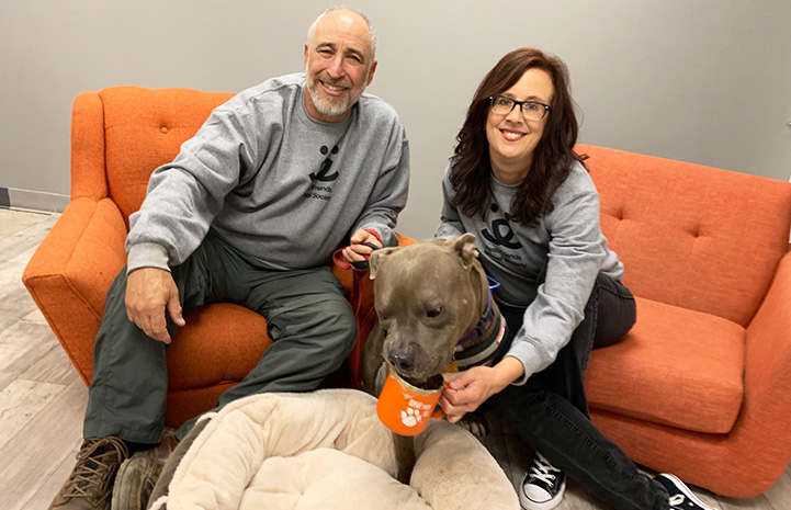 Volunteer David Glazer with a woman and Bono the dog (who is drinking from a coffee cup) on a couch