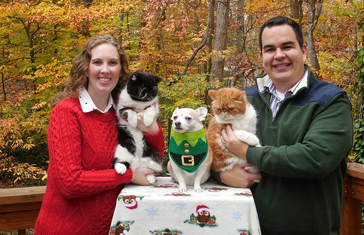 Eric and Erin Granados' pets, Smiley and Smuffin the cats and Obie the dog, are the inspiration for volunteering