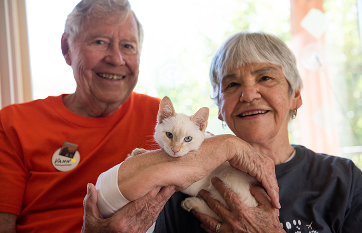 Mary Rose and Vann Hollie with Narnia the flamepoint Siamese kitten