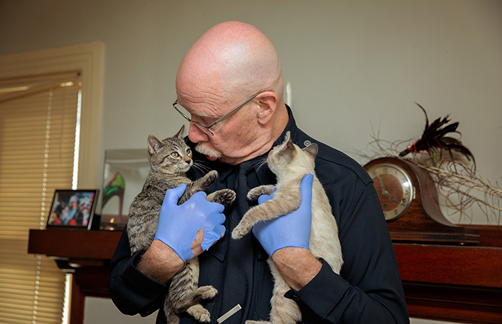 Volunteer Michael Moran holding two foster kittens while looking down at one of them