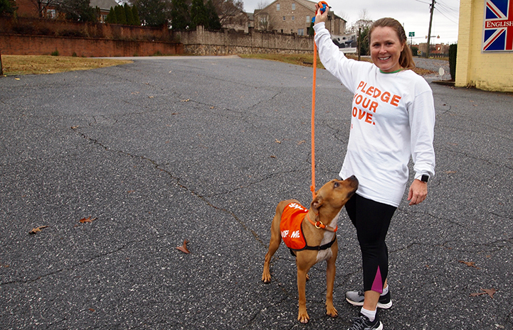 Volunteer Sandy Saffold holding the leash up to a brown dog wearing an Adopt Me vest