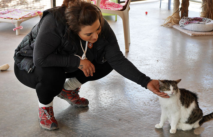 Volunteer Ines Lopes giving some love in Cat World