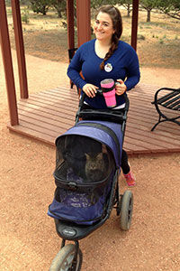 Volunteer Ines Lopes pushing a kitty stroller