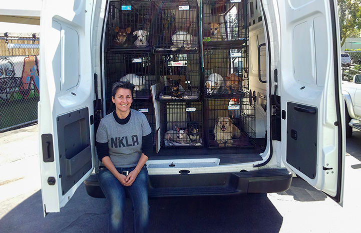 Andrea Kraus standing in front of a transport van full of dogs