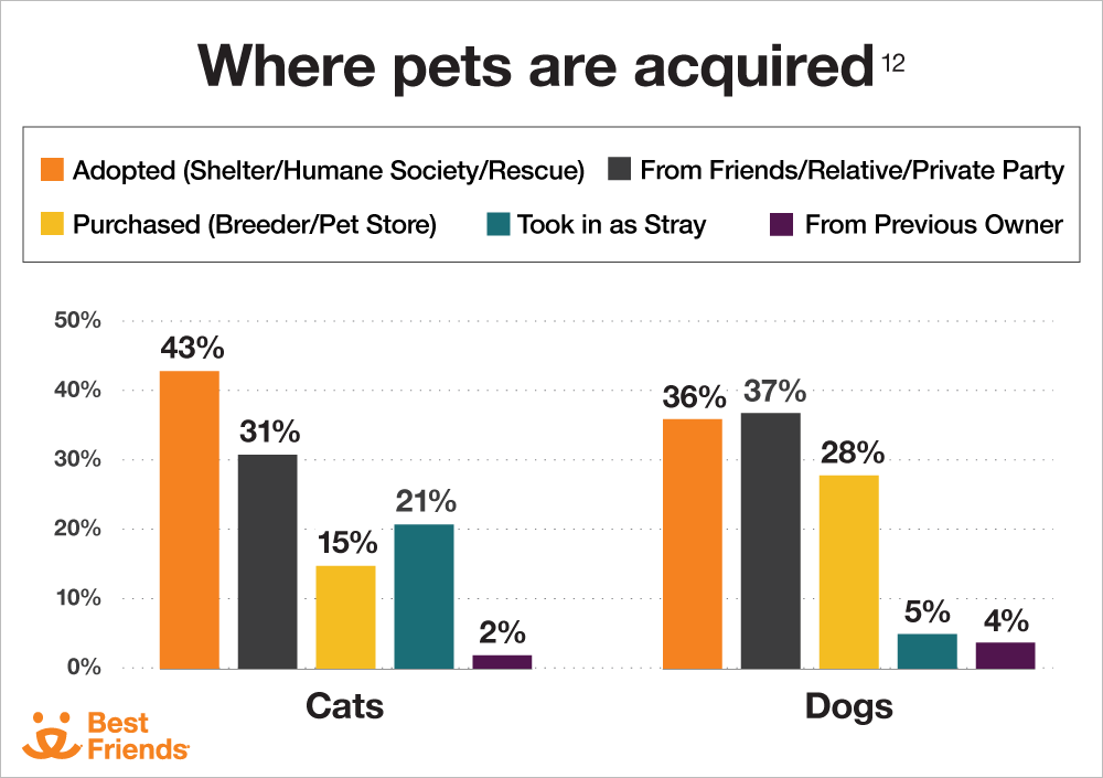 Where pets are acquired