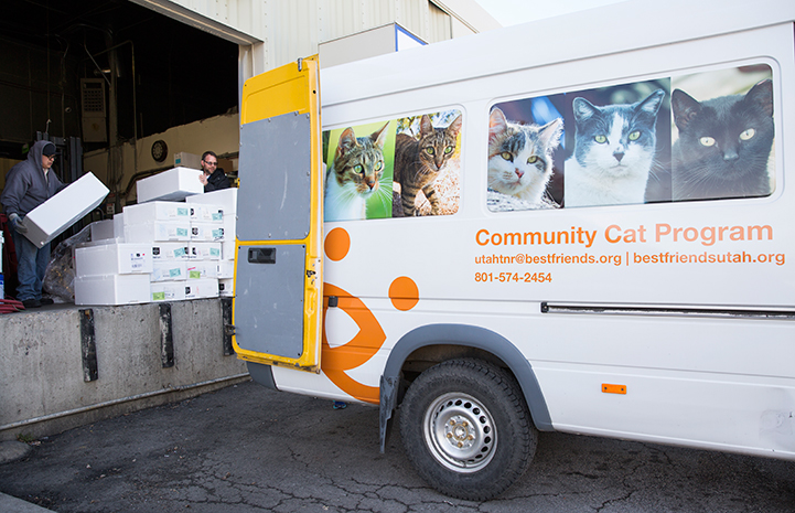The community cat program in Salt Lake City helps both the city's outdoor unsocialized or stray cats through spay/neuter services, donated food and winter shelters