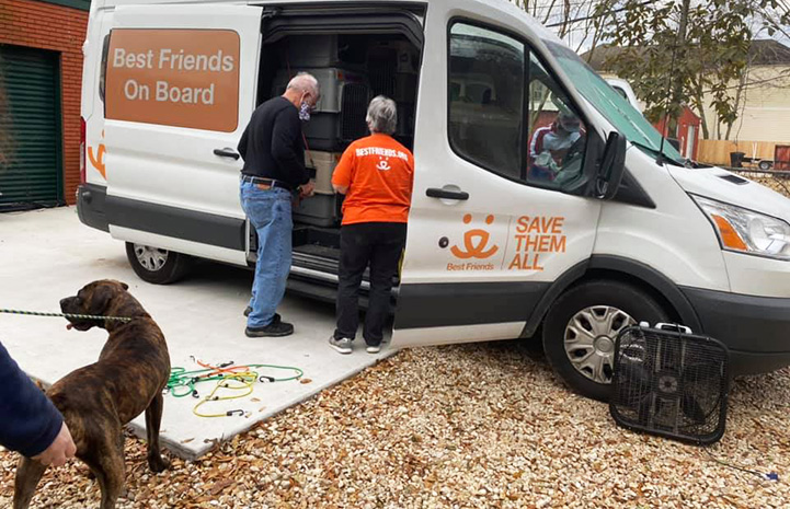 Two people loading up a Best Friends transport van with a brindle dog on a leash ready to get in