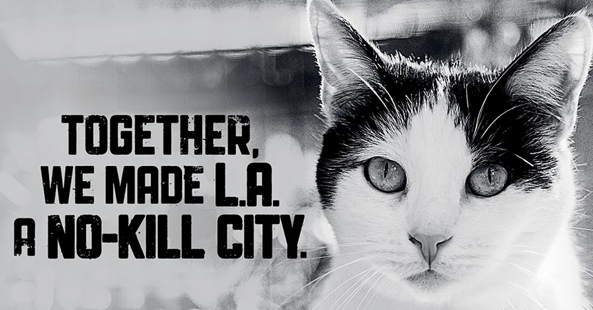 Black and white photo of a cat with text, Together we made L.A. a no-kill city